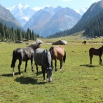 Disabilities tours in Kyrgyzstan