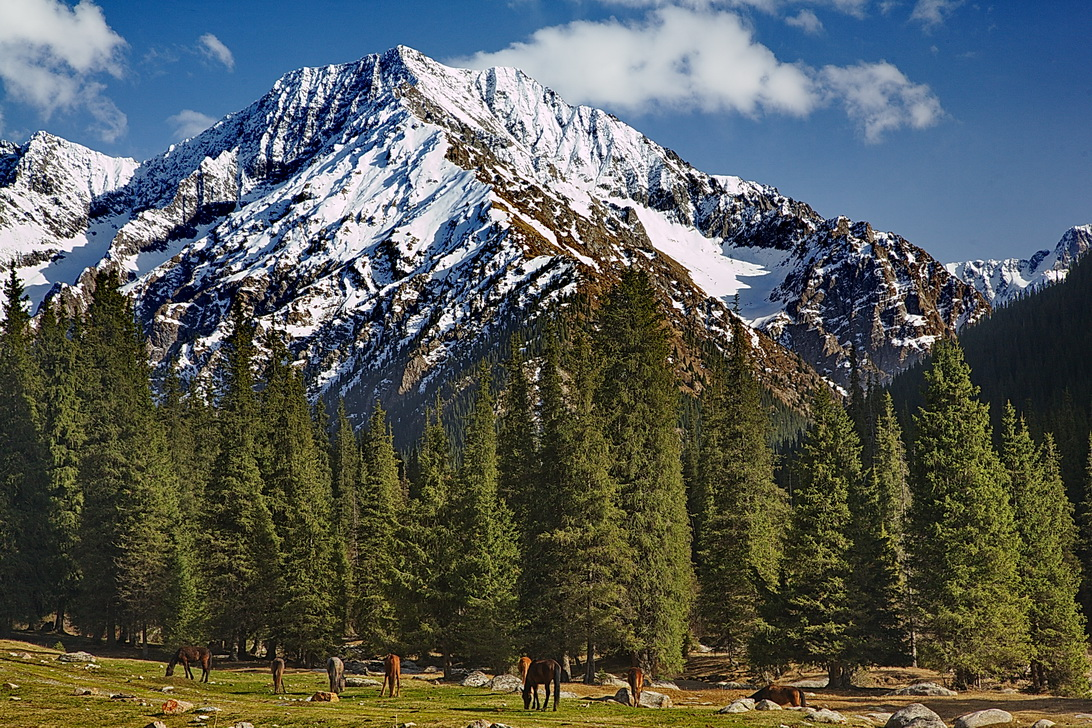Culture and trekking tour in Kyrgyzstan